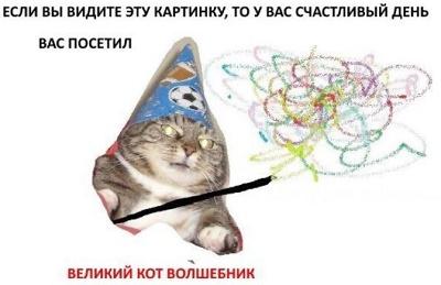 Мем Вжух. Кот с волшебной палочкой