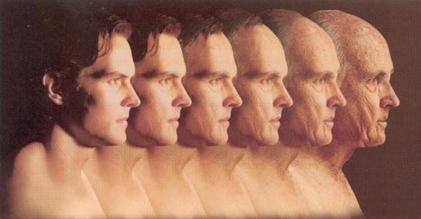 Как предотвратить возрастную деградацию разума