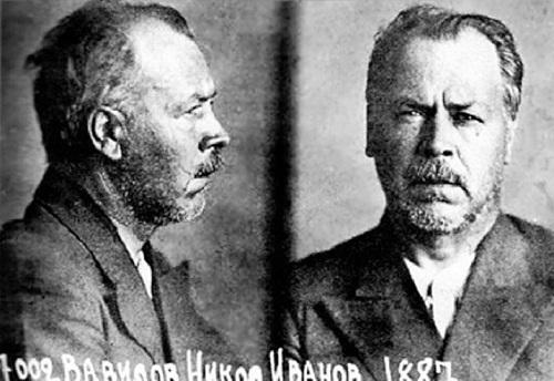Сергей Вавилов об аресте своего брата, академика Николая Вавилова